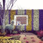浜名湖花博2014は、花に興味がなくても楽しめる