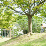 浜松城公園の冒険公園を貸切って遊ぶ