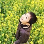 磐田市の桶ケ谷沼に菜の花を見に行く