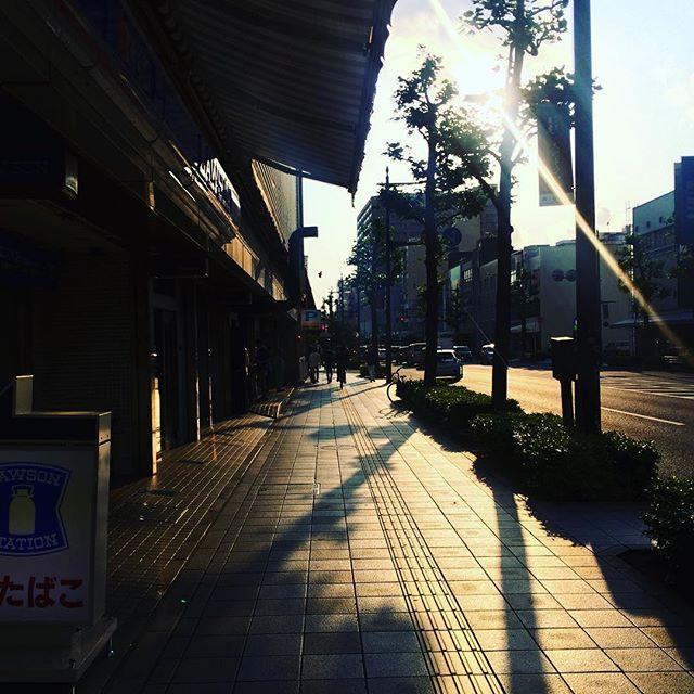 暑すぎる日の夕暮れ。コントラストがきついゆりの木通り (Instagram)