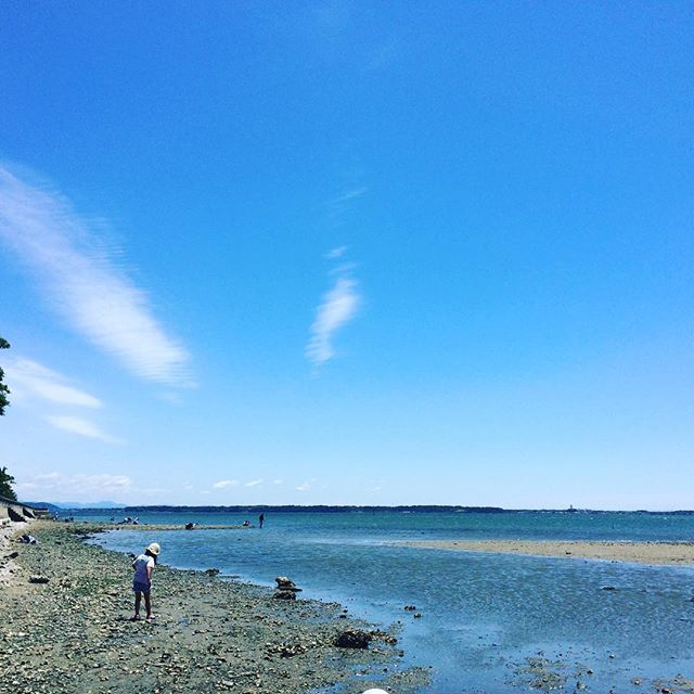 浜名湖の西岸から浜松市を見る。右下にちょこんと飛び出たのがアクト。近場の自然をもっと楽しもうと思った休日#海の幼稚園 #浜名湖 (Instagram)
