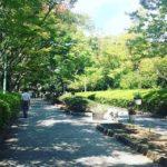雰囲気のある通りを探して、うろうろ。#景観 (Instagram)