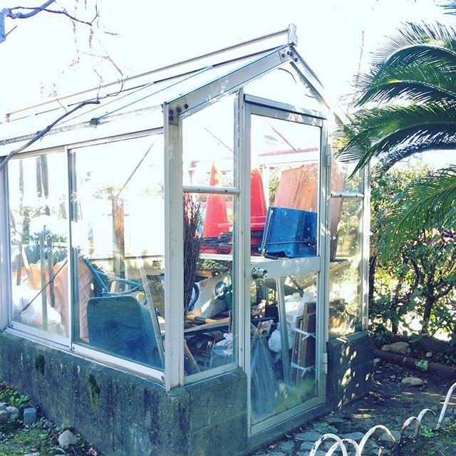 こぢんまりとしたこんな温室もいいなぁ。夜になったら発光させたり。#温室 (Instagram)