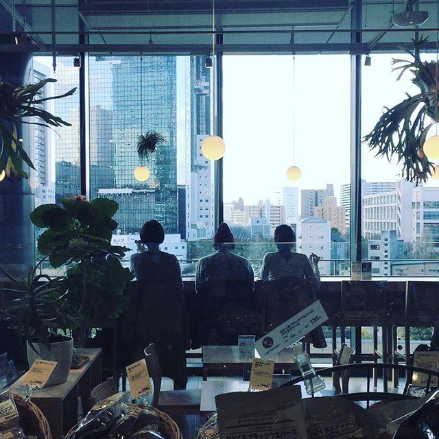 都会の景色を楽しんでます (Instagram)
