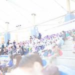 須磨水族館でイルカショーを見てきました