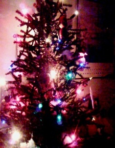filename_tree.jpg
